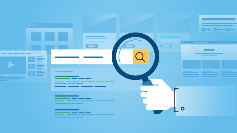 What Your SEO Provider Should Be Doing